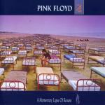 Pochette d'A Momentary Lapse of Reason