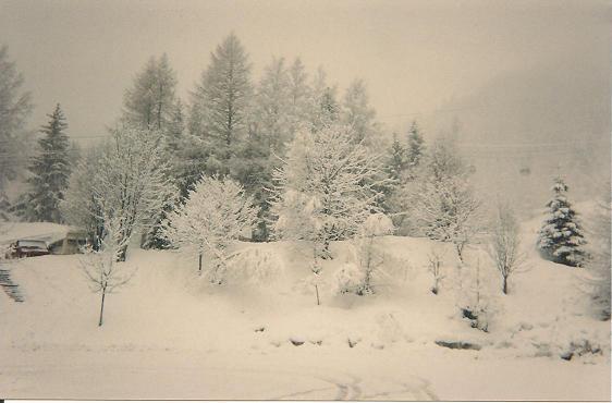 Photos de Hollande et d'ailleurs 197_1269816047_ski_014