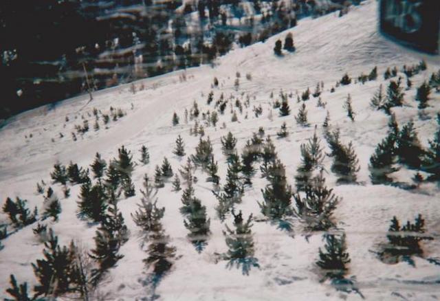 Photos de Hollande et d'ailleurs 197_1321199355_46-ski