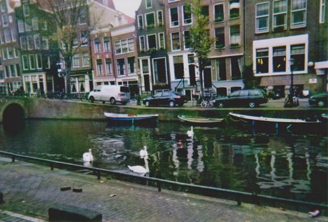 Photos de Hollande et d'ailleurs 197_1324158184_78-hollande
