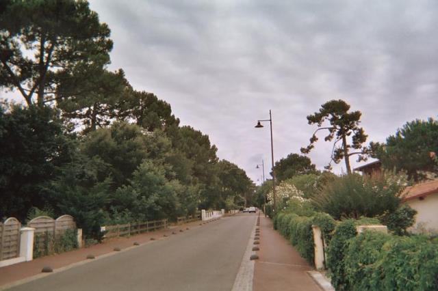 Photos de Hollande et d'ailleurs - Page 2 197_1383328400_a08-3-009_6a-